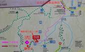 淡水楓樹湖古道木蘭花辛夷 20150225 :楓樹湖木蘭花 Map.jpg