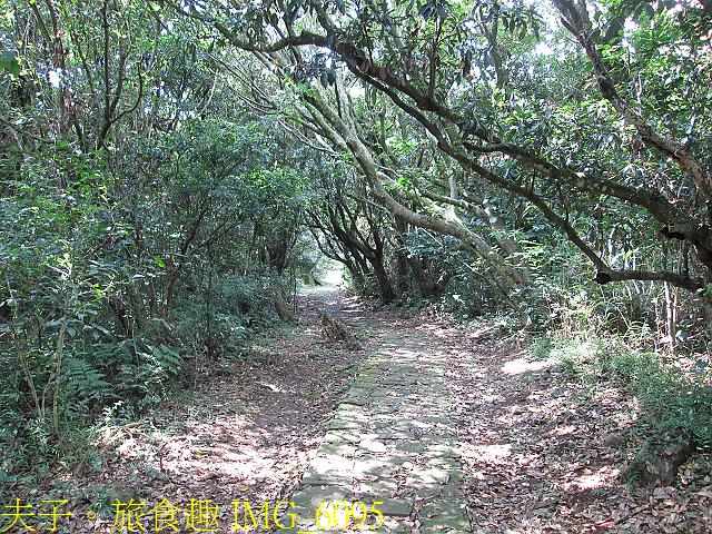 IMG_6095.jpg - 陽明山國家公園 面天山 - 向天山步道 向天池、向天山、面天山 20200916