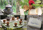 寶山拿普原生茶有機茶園  20201017:116769871209.jpg