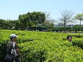 2011/04/24 花博倒數第二天, 最後的一個週日, 天氣晴, 人人山人海:P1020518.JPG
