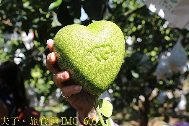 IMG_6055.jpg - 幸福文旦柚農遊體驗之旅 幸福滿滿滿!20200806