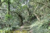 陽明山菜公坑登山步道 反經石 20180213  :IMG_7096.jpg