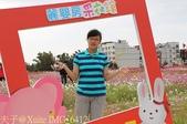 2014 蘆竹花彩節 萬花同樂會 2014/11/10 :IMG_6412.jpg