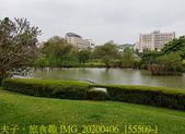 台灣大學生態池 複刻瑠公圳水源地 20200406:IMG_20200406_155509-1.jpg
