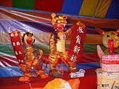 桃園燈會 2010/02/23 :P1070222.JPG