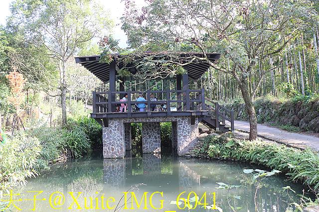 IMG_6041.jpg - 華山文學步道、古坑咖啡大街 20191109