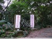 土城承天禪寺 and 桐花公園螢火蟲 20100429:P1070748.JPG