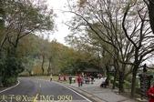 2014楓石門 野餐日 (桃園石門水庫 南苑公園) 2014/12/13:IMG_9950.jpg