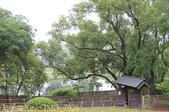 一滴水紀念館 - 新北市淡水區淡水和平公園 20150417:IMG_7926.jpg