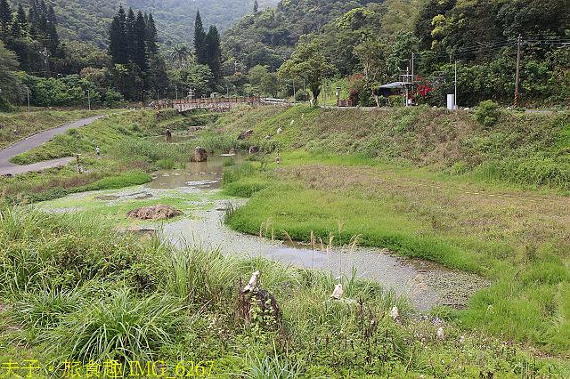 IMG_6267.jpg - 台北市內湖金瑞治水園區 20210317