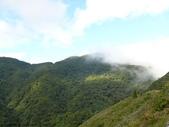 桃園上巴陵拉拉山 (達觀山) 2009/11/26 :P1050524.JPG