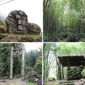 嘉義阿里山鄉迷糊步道(米洋溪步道) 2015/07/18:相簿封面