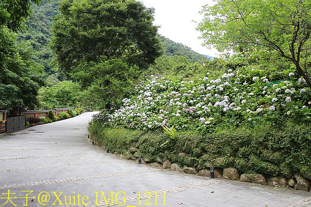 苗栗 南庄雲水度假森林 20190603 :IMG_1211.jpg