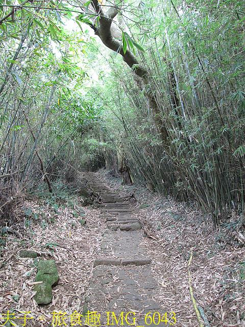 IMG_6043.jpg - 陽明山國家公園 面天山 - 向天山步道 向天池、向天山、面天山 20200916