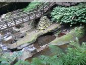 水簾橋(糯米橋)水簾洞-獅頭山 2009/12/23 :P1050928.JPG
