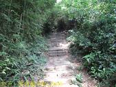 陽明山國家公園 面天山 - 向天山步道 向天池、向天山、面天山 20200916:IMG_6046.jpg