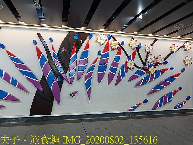 IMG_20200802_135616.jpg - 台北市大安森林公園 20200802