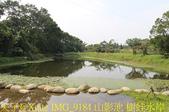 大漢溪山豬湖生態親水園區 20181107:IMG_9184 山影池 樹蛙水岸.jpg