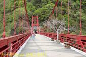 巴陵橋假日廣場 20190330:IMG_6443.jpg