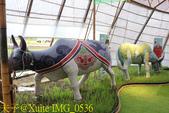 2019桃園農業博覽會  20190920:IMG_0536.jpg