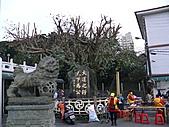 淡水無極天元宮, 櫻花開了!  2011/03/08 17:00 天氣: 陰:P1010404.JPG