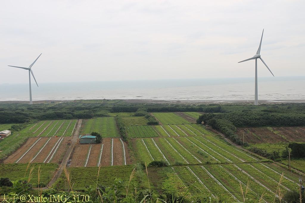 苗栗後龍好望角 2013/06/12:IMG_3170.jpg