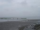 20081123高美濕地風景區:照片 014.jpg