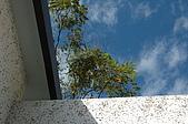 山璞傳說溫泉VILLA:DSC_6003.jpg