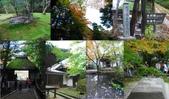 Japan 2011 -Gourmet:11.20哲學之道.銀閣寺法然院.真如堂5.jpg