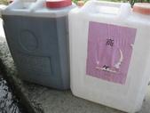 101年1期水稻:IMG_0026.JPG