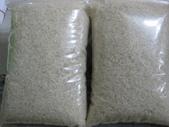 台農秈稻22號:試碾的台農22號白米.JPG