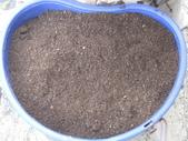 有機益菌分解稻草:IMG_0041.JPG