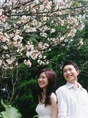 娃娃&瑋瑋的婚紗照:1241909691.jpg