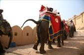 Jaipur(印度):1092279670.jpg