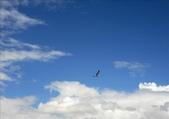 阿爾金山保護區   (怪石群&阿雅克庫木湖):1252662856.jpg