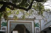 Udaipur (印度):1149179138.jpg