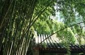 北京:1147246387.jpg