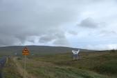 冰島北部: Reykjavik-Hvammstangi-Akureyri:騎馬還有200公尺,看海豹540公尺