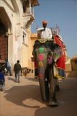 Jaipur(印度):1092279674.jpg