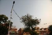 Jaipur(印度):1092279721.jpg