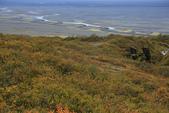 Vik-Skaftafell National Park-Jokulsarlon-Reykjavik:回程往服務中心啦