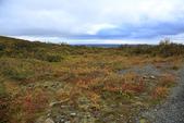 Vik-Skaftafell National Park-Jokulsarlon-Reykjavik:沿路的秋景美不勝收