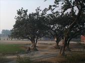 Varanasi(印度):1609217490.jpg