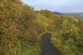 Vik-Skaftafell National Park-Jokulsarlon-Reykjavik:獨行而沒迷路,真要給自己拍拍手!