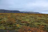 Vik-Skaftafell National Park-Jokulsarlon-Reykjavik:回到服務中心後,立刻馬上奔往右邊的冰河...