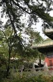 北京:1147246370.jpg