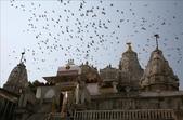 Udaipur (印度):1149179133.jpg