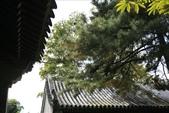 北京:1147246383.jpg