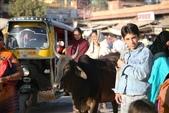 Ranakpur    &  Jodhpur (印度):1629279823.jpg
