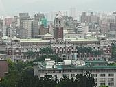 花花草草:P1040861.JPG
